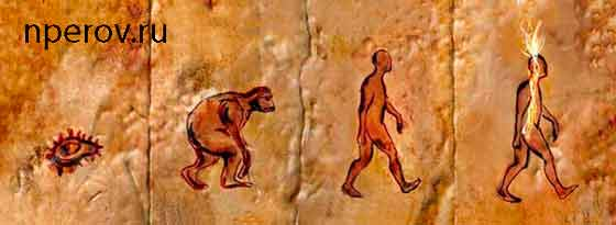 Медитация и код эволюции