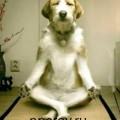 Chto_dala_mne_meditacia