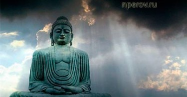 meditation_evolution_chast-3